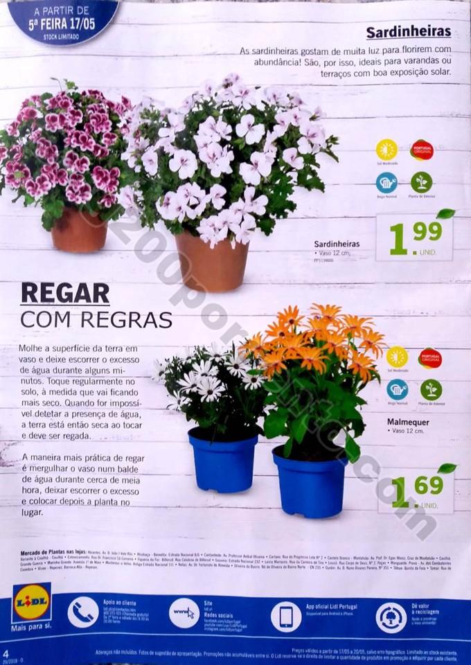 mercado plantas lidl_4.jpg