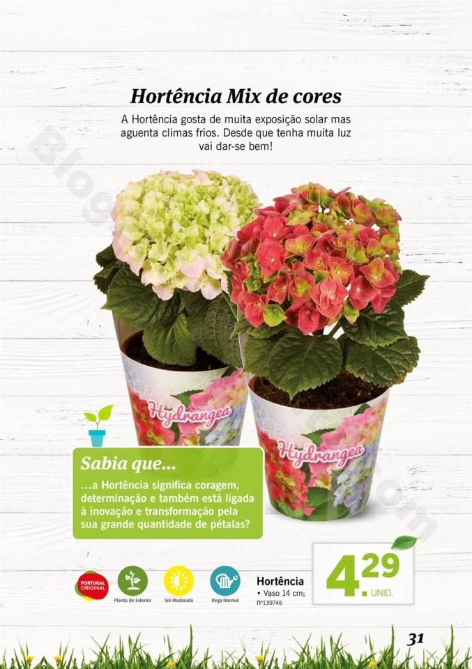 Mercado-de-Plantas-A-partir-de-04.04-01_030.jpg