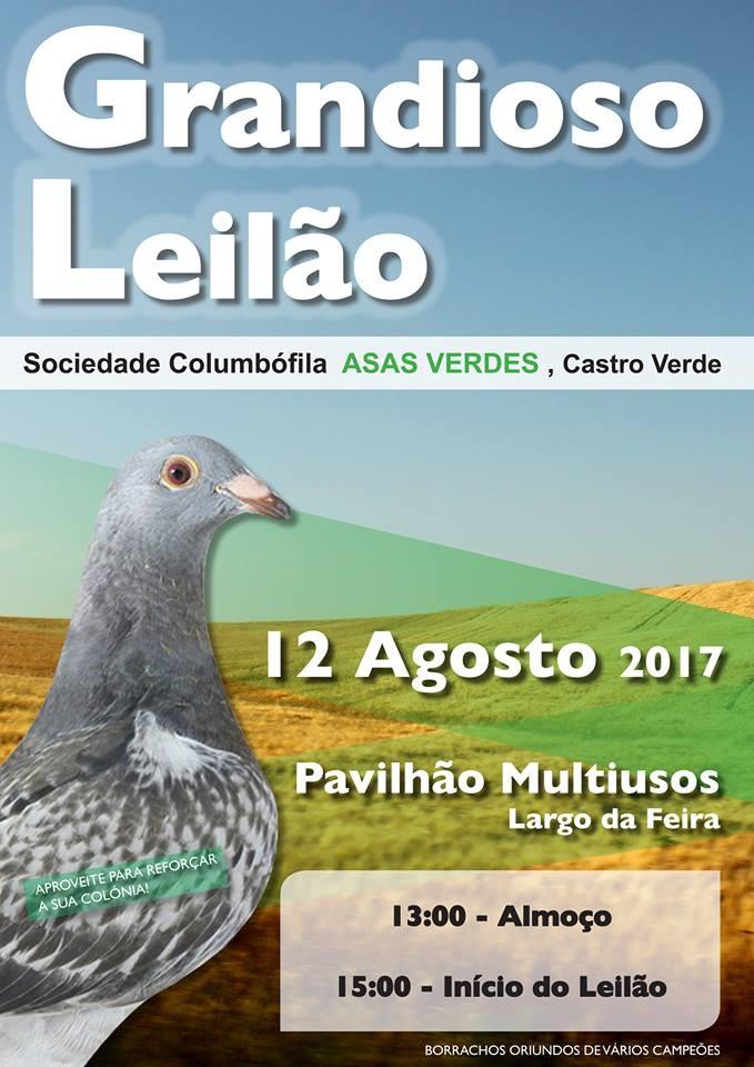 Leilão Asas Verdes.jpg