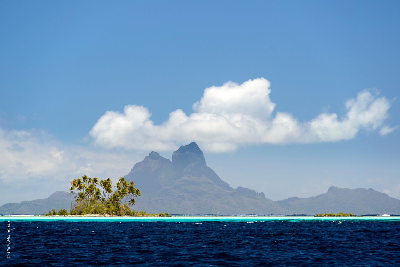 McLennan_Tahiti_2013_0179.jpg