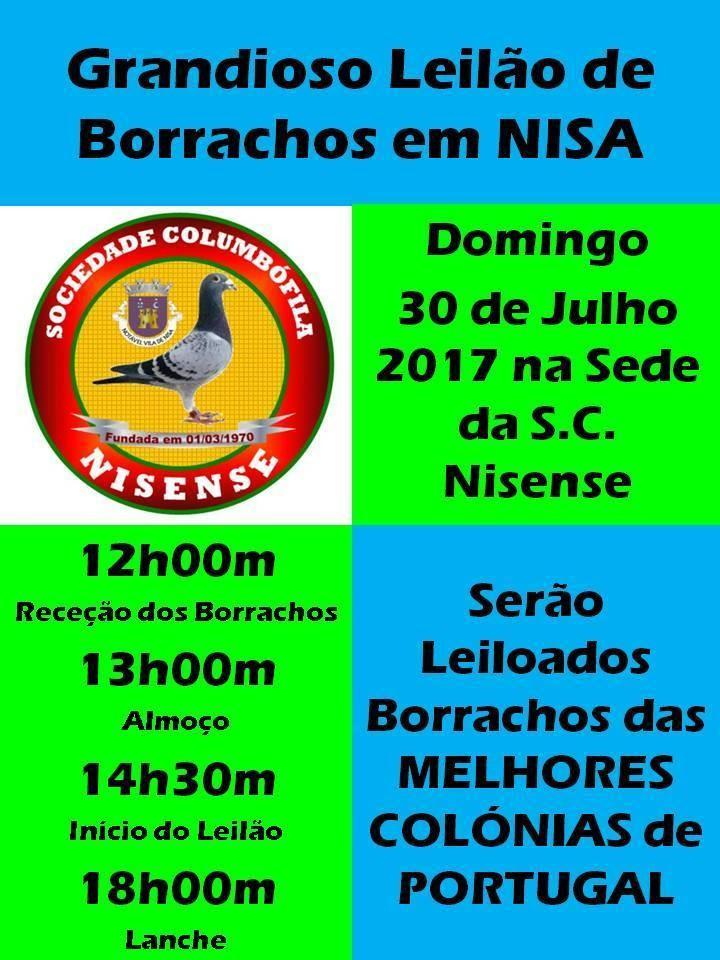 Leilão Nisa.jpg