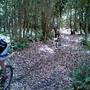 Coimbra XCM BTT Abrunheira - Bikes no pinhal (5)