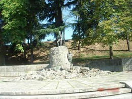 Viseu, cidade de Viriato