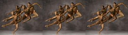 Bailarinos clássicos_ballet