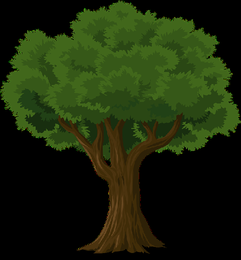 tree-576847_960_720.png