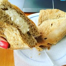 pão com queijo fresco.jpg