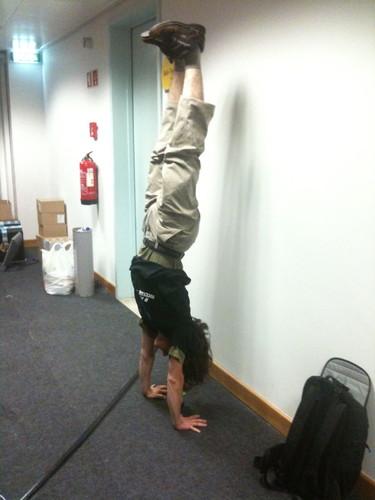 Delfim, handstand