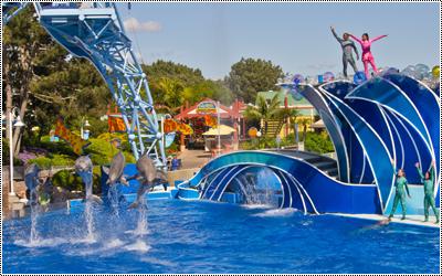 SeaWorld San Diego 17345217_HQCEh