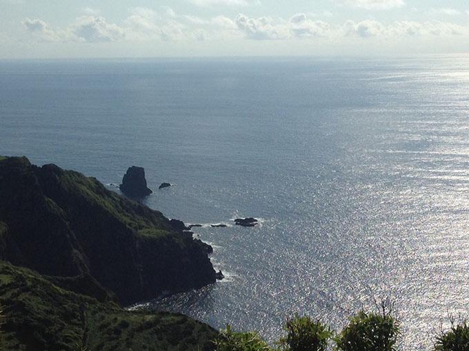 Flores Açores
